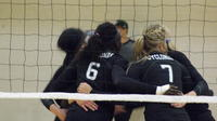 Volleyball 2014